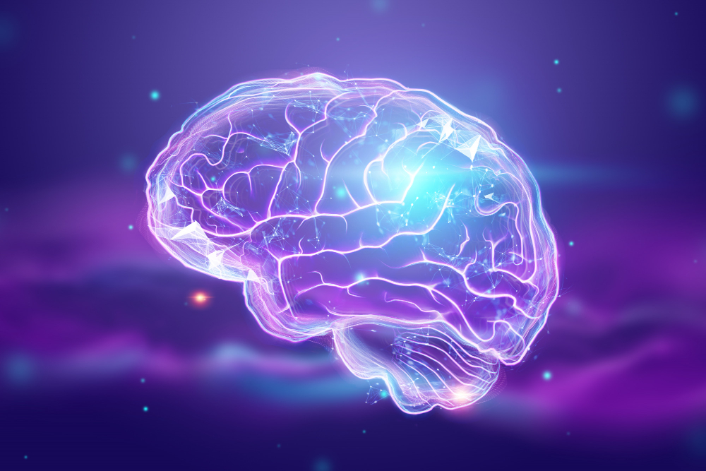 cerveau machine